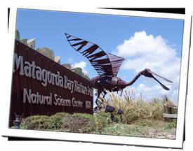 Matagorda_Nature_Park