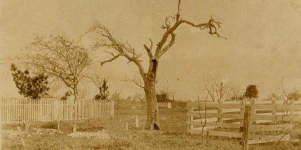 Matagorda Cemetery 1900s